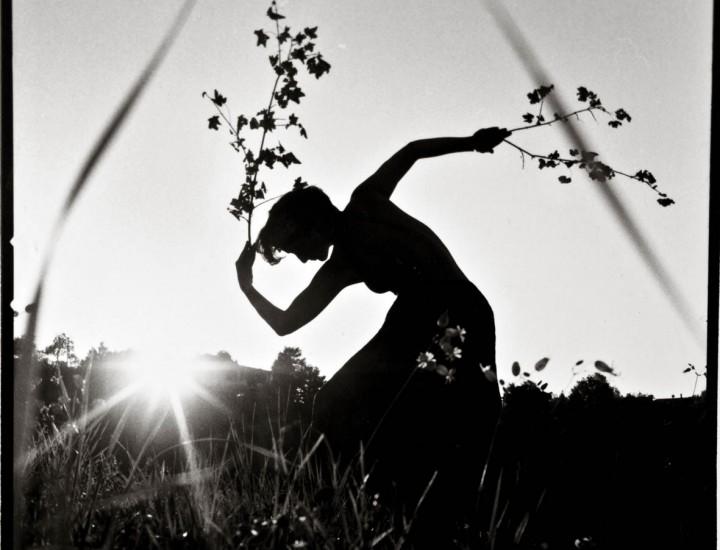 Danzare il tramonto